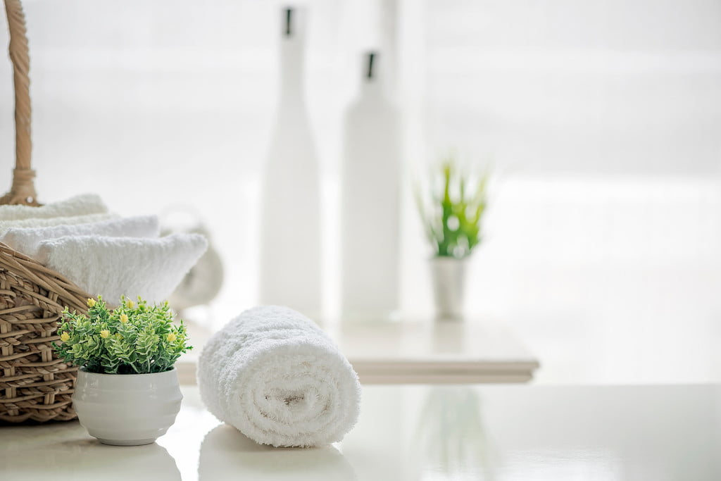 rolled towels and plant in bathroom