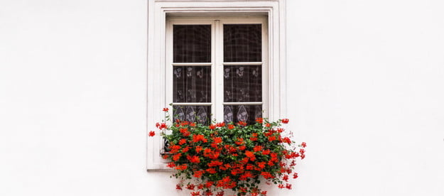 the best window planters for sills and hanging indoors planter