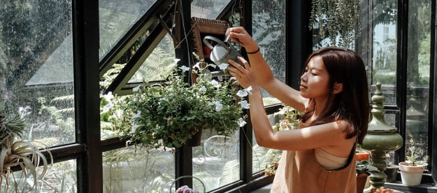 6 simple projects to celebrate national gardening week in greenhouse