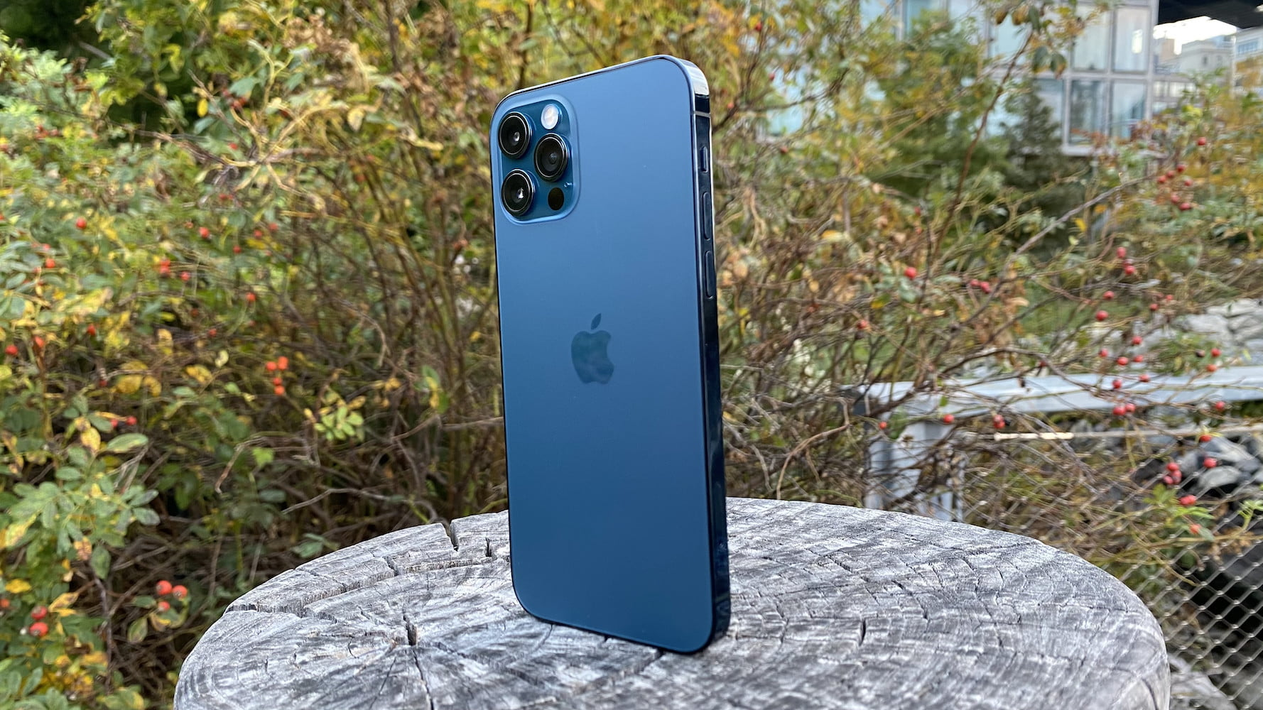 iphone 12 pro revision 13