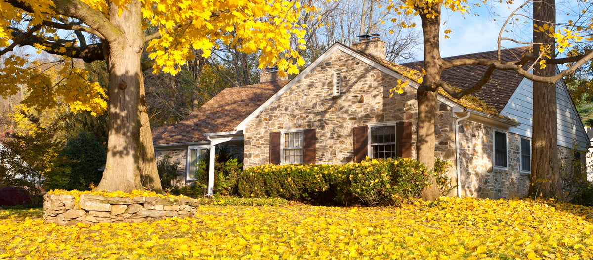 stone house with yard full of golden leaves