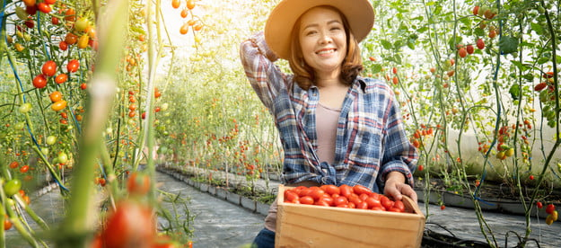 A woman holding a basket of tomato