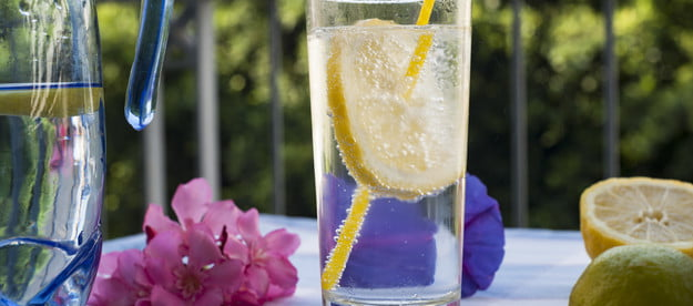 best seltzers and sparkling waters sparking mineral water with lemon