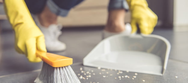 the best dustpan and brushes for sweeping brush